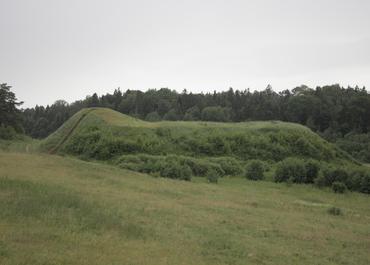 Bubių piliakalnis