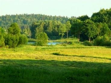 """Tvarkytų Europos ekologinio tinklo """"Natura 2000"""" teritorijų valdymo rekomendacijų parengimas"""