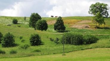 Dalyvaukite išvykoje į Gražutės ir Sartų regioninius parkus