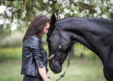 Profesionali fotosesija su žirgais ir fotografu