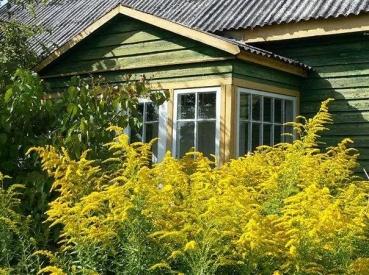 Kviečiame pasidalinti savo sodybų langų fotografijomis!
