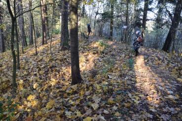 Kurtuvėnų regioniniame parke atrastas naujas piliakalnis